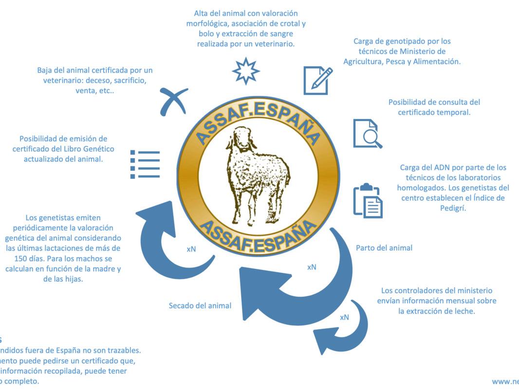 Un año haciendo trazabilidad blockchain para ganado