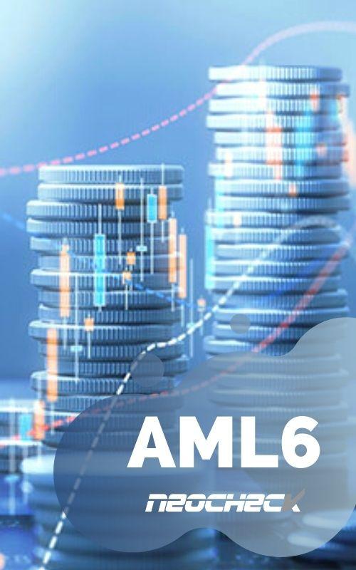 AML6 sexta directiva antiblanqueo